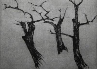 R 242 | Bäume | 1984 | 236x297