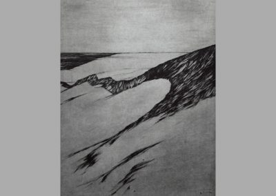 R 273 | Dünen | 1986 | 397x294