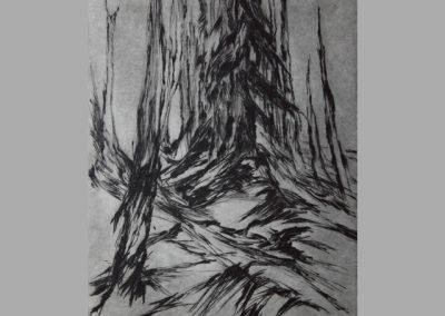 R 291 | An der Baumgrenze | 1987 | 294x237