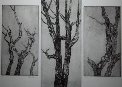 R 405 | Der Baum | Triptychon | 2001 | 237x177 | 297x197 | 237x1771.jpg