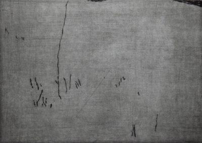 R 420 | Gras im Schnee | 2003 | 177x237