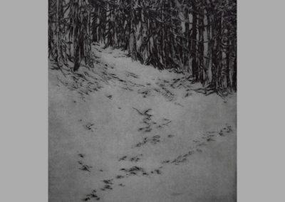 R 426 | Winterwald | 2004 | 223x198