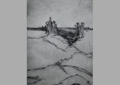 R 474 | Hölzer am Meer | 2009 | 238x178