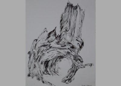 Z 451 | Baumgespräch - gewachsene Form II | 1993 | Rohrfeder, Tusche auf Ingres | 398x298