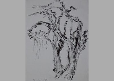 Z 455 | Baumleben II | 1993 | Rohrfeder, Tusche auf Ingres | 398x300