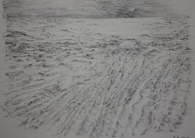 Z 558 | Am Meer | 1996 | Feder, Tusche auf Bütten | 412x595
