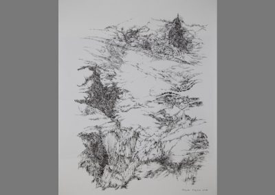 Z 663 | Filigrane Landschaft | Feder, Tusche | 2000 | 630x485