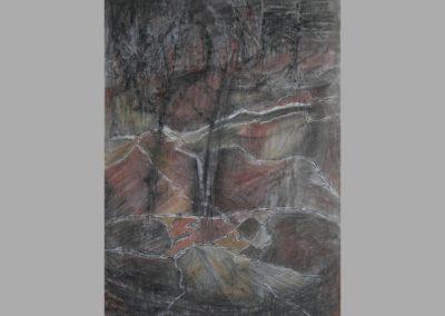 Z 684 | Gewachsene Formen | 2006 | Feder, Tusche, Pastell auf grauem Papier | 695x500